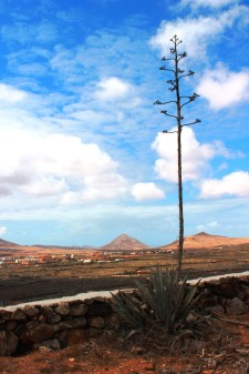 MontañadeTindaya_10